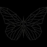 Schmetterlingslinie