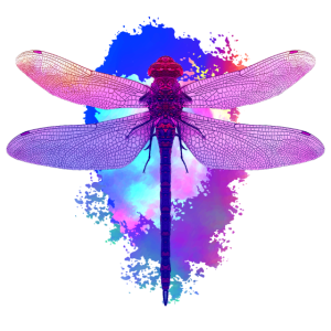 Libelle Libellen Dragonfly Geschenk