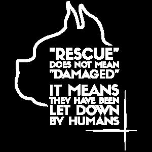 Hund Hunde Geschenk Tierschutz Tierheim Rescue Dog