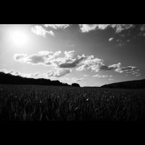Wiese und Wolken s/w