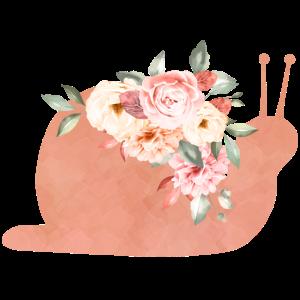 Blumenschnecke