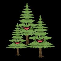 Tanne Tannen Wald Bäume Natur Naturschutz Klima