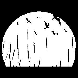 Vogelschwarm Naturliebhaber Sonne Geschenk
