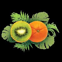 orange Kiwi-Shirt