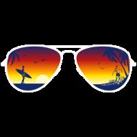 Summer Surfer Sunglasses