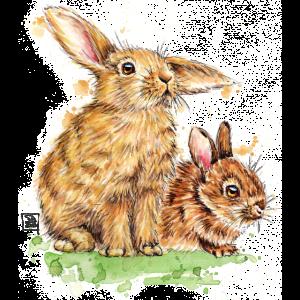 SM Hasen   bunnies