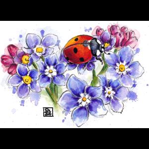 SM Marienkäfer   ladybug