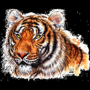 SM Tiger | tiger