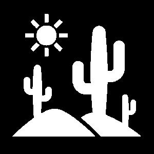 Kakteen Landschaft Wüste