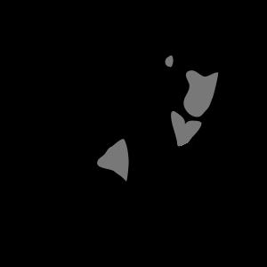 Gorilla Affe
