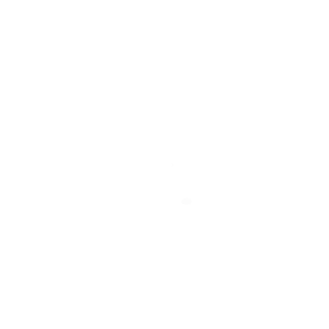 ISS - Raumstation (weiß)