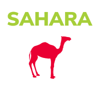 Kamel Wüstentour Sahara