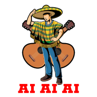 Mexicaner Sombrero Mexico Geschenk Lateinamerika