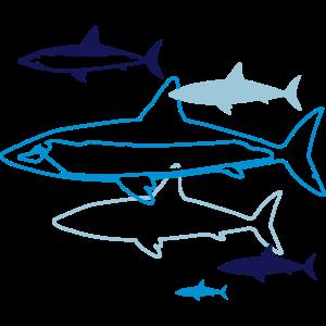 sechs Haie