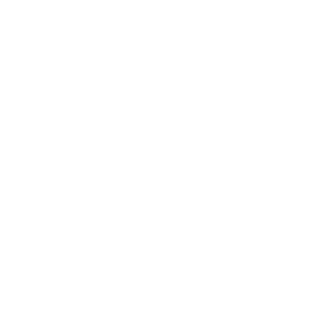 we are making history