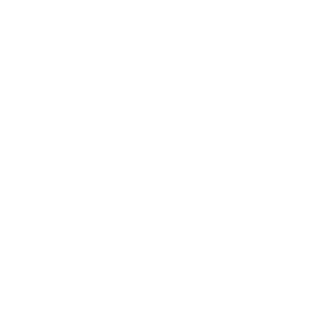 the summer in Florida