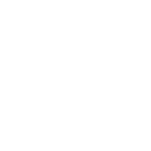 Team Carnivore distressed | BBQ Skull