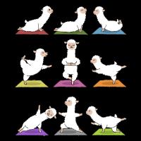 Yoga Alpaka