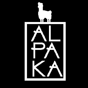 Alpaka süßes Lama