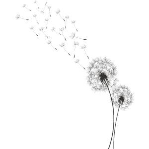 Pusteblume,Löwenzahn Shirt
