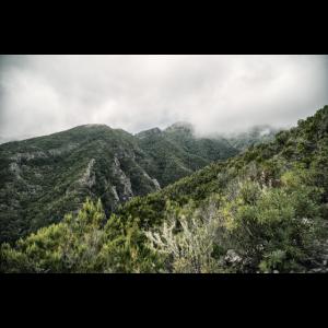 Berg Panorama Nebel Teneriffa Gebirge Tal