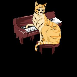Piano Katze