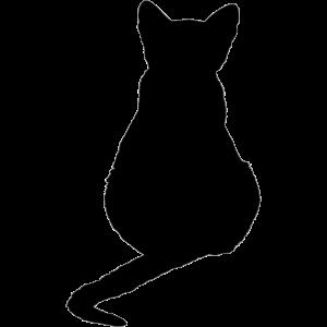 schwarze Katze Katzen Kätzchen Geschenk Weihnachte