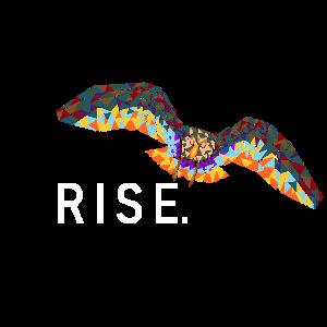 RISE | LIKE | A | PHOENIX