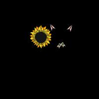 Boho Love Sonnenblume Liebe
