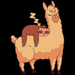 schlafend Faultier Lama Geschenk lustig