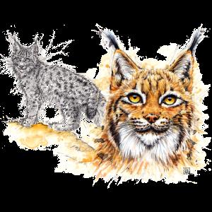 SM Luchs   lynx