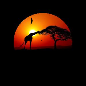 Giraffe Afrika Safari Geschenk