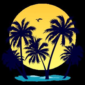 Palmen, Strand und Sonnenuntergang