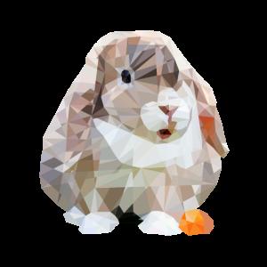 polygon Kaninchen Möhrchen Hase Widder Schlappohr