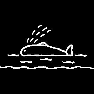 Walfisch Ozean - Dicker Wal schwimmt im Wasser