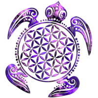 Flower of Life - Turtle 2