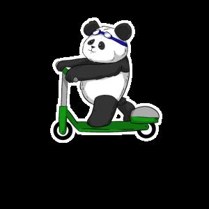 Escooter Panda Eroller Escooter escooting Trend