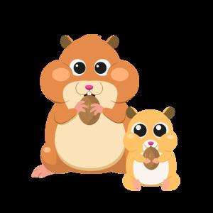 Hamster Tier Design Personalisieren als Geschenk