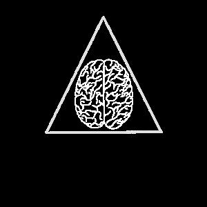 Gehirn im Dreieck