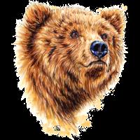 SM Bär | baer