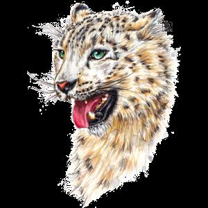 SM Schneeleopard   snow leopard