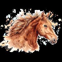 SM Pferd | horse