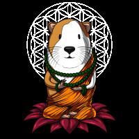 Meerschweinchen Zen Yoga Meditation Buddha