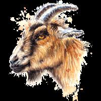 SM Ziege | goat