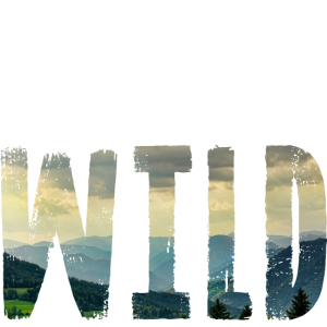 Abenteuer in der Wildnis