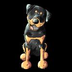 Witziger Rottweiler - Hund