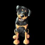 Fröhlicher Rottweiler - Hund