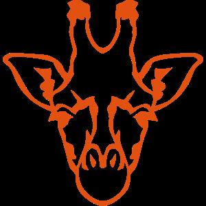 Giraffentierkopf 1 94
