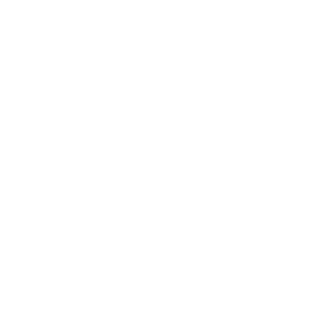 Erdferkel - Nasenbär
