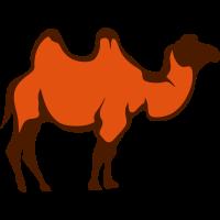 Kamel wildes Tier 29